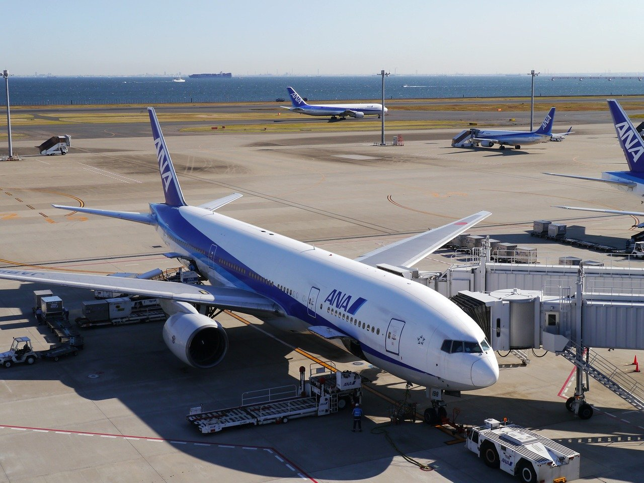 ANA Boeing 787 jet diverts to Russia after pilot incapacitation